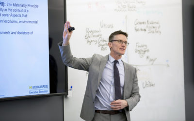 Sustainability Management for a Rapidly Changing World: Q&A with Erb Institute's Terry Nelidov