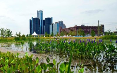 This is Detroit's moment to lead, says Sustainable Business Network of Detroit
