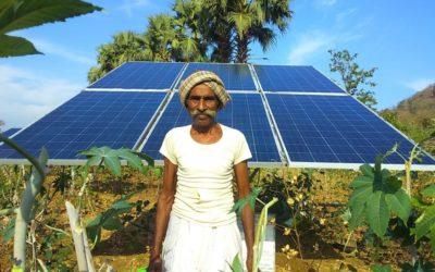 Leapfrogging the Grid: How Solar Water Pumps Could Revolutionize Indian Agriculture