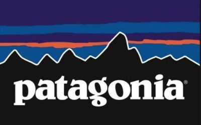 Patagonia: Encouraging Customers to Buy Used Clothing (A)