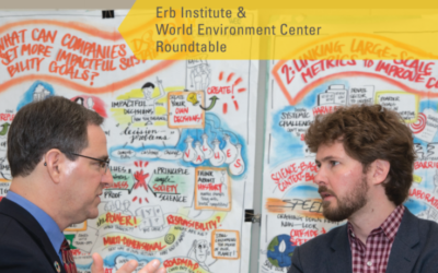 Managing for Business and Societal Impacts:  Erb Institute and World Environment Center Roundtable (Washington D.C)