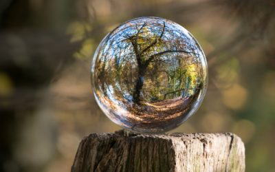 Looking into the crystal ball, at Ford