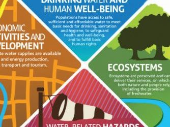 Water Stewardship in Africa: The Next Frontier for Building Shared Value