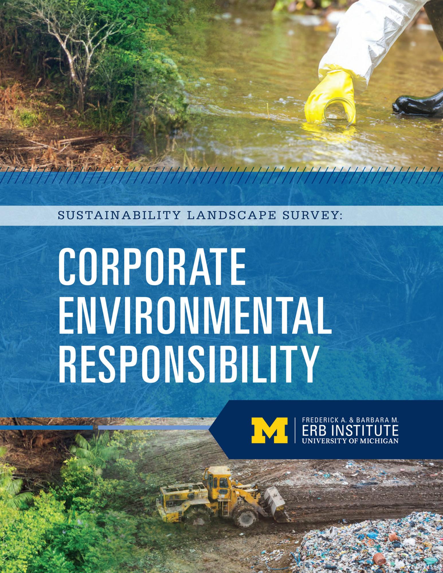 Sustainability Landscape Survey: Corporate Environmental Responsibility