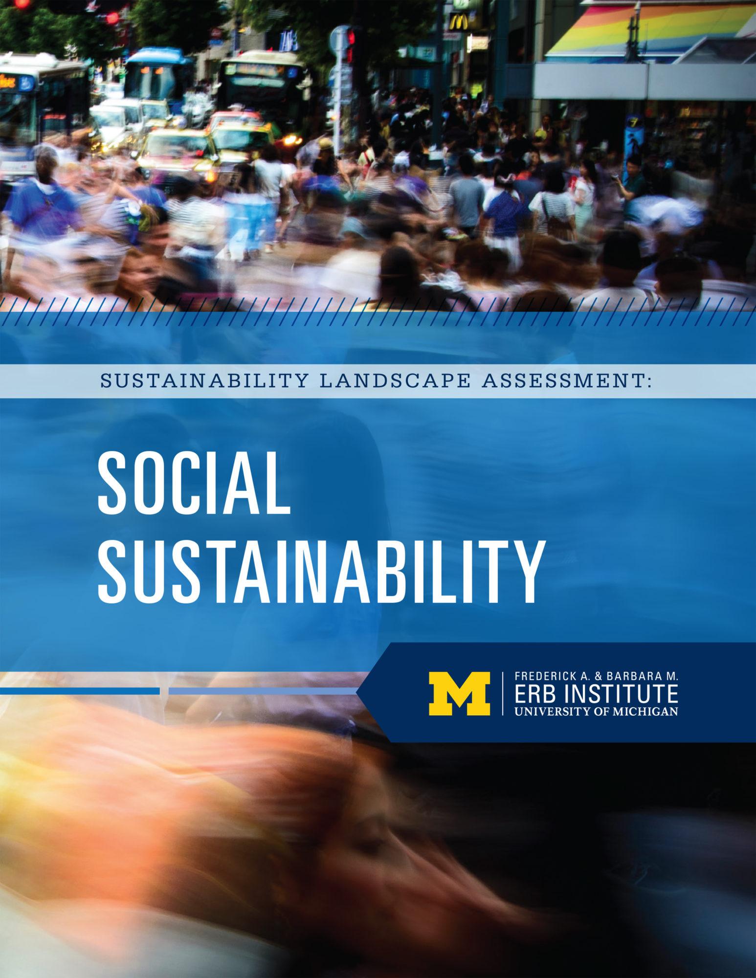 Sustainability Landscape Assessment: Social Sustainability